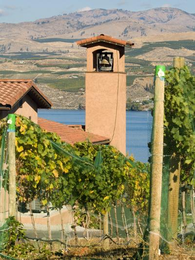 Mountains and Lake Chelan, Columbia Valley Appellation, Washington, USA-Janis Miglavs-Photographic Print