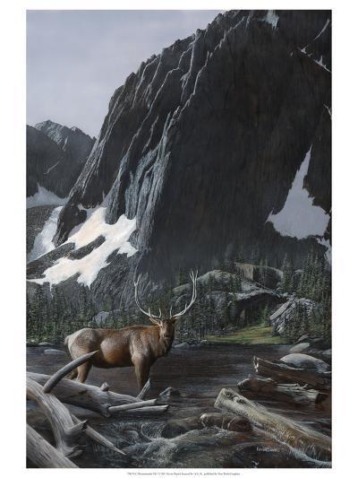 Mountainside Elk I-Kevin Daniel-Art Print