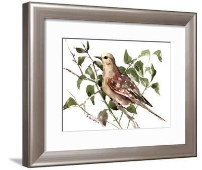 Mourning Dove 2-Suren Nersisyan-Framed Art Print