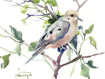 https://imgc.artprintimages.com/img/print/mourning-dove_u-l-f8xxzr0.jpg?p=0