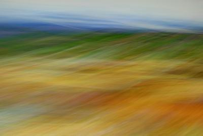 Moved Landscape 6491-Rica Belna-Giclee Print