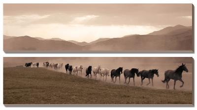Moving Forward-Jorge Llovet-Canvas Art Set