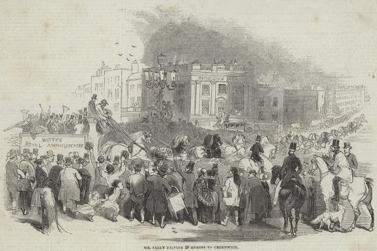 Mr Emily Driving 28 Horses to Greenwich--Giclee Print