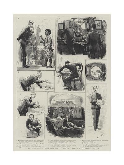 Mr Goslynge's Gold-Fish, their Short Through Glittering Career-Joseph Nash-Giclee Print
