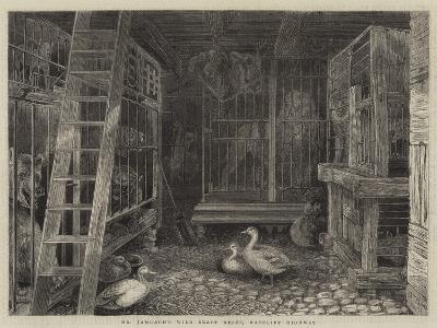 Mr Jamrach's Wild Beast Depot, Ratcliff Highway--Giclee Print