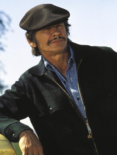 Mr. Majestyk--Photo
