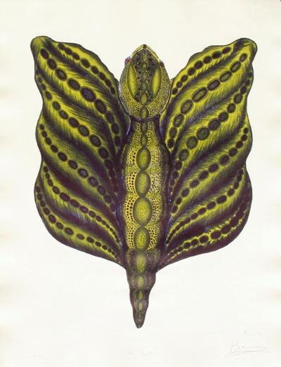 Mr Papillon II-Ben Banay-Limited Edition