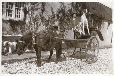 Mrs K Mcneil of Glasgow with Three Borzois--Photographic Print