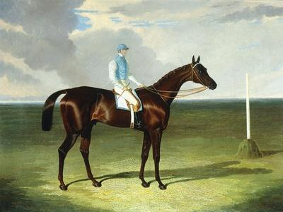 https://imgc.artprintimages.com/img/print/mssrs-ridsdale-s-and-gully-s-st-giles-with-william-scott-up-1832_u-l-ppv3pw0.jpg?p=0