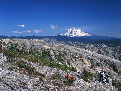Mt Adams from Windy Ridge, Mt St Helens Volcanic National Monument, Washington, USA-Kent Foster-Photographic Print