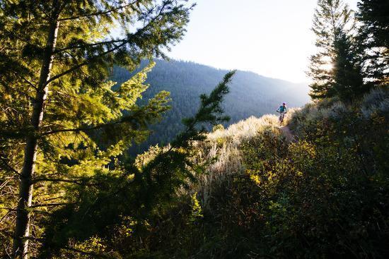 Mt Biker Rides Singletrack On Putt Putt Trail Across Valley From Snow King Ski Area, Jackson, WY-Jay Goodrich-Photographic Print