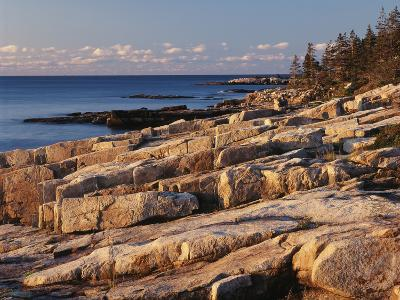 Mt Desert Island, View of Rocks with Forest, Acadia National Park, Maine, USA-Adam Jones-Photographic Print
