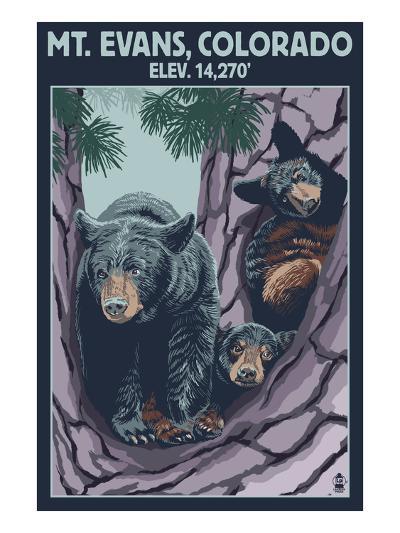 Mt. Evans, Colorado Elv. 14,270 - Black Bear Family-Lantern Press-Art Print