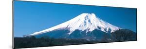 Mt Fuji Yamanashi Japan