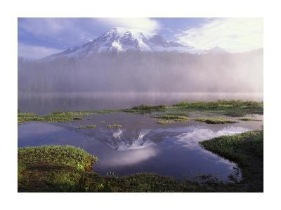 Mt Rainier, an active volcano encased in snow, Mt Rainier National Park, Washington-Tim Fitzharris-Art Print