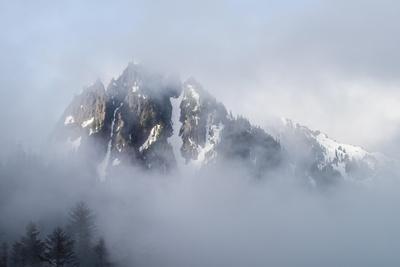 Mt Rainier National Park-Steve Gadomski-Photographic Print