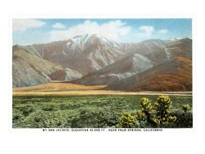 Mt. San Jacinto, Palm Springs, California