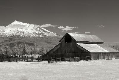 Mt. Shasta I-George Johnson-Photographic Print