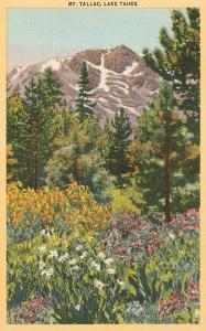 Mt. Tallac, Lake Tahoe