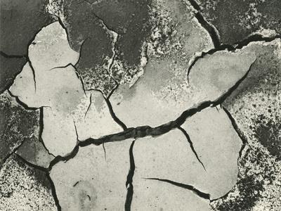 https://imgc.artprintimages.com/img/print/mud-cracks-salinas-valley-california-1955_u-l-q1g6w7m0.jpg?p=0