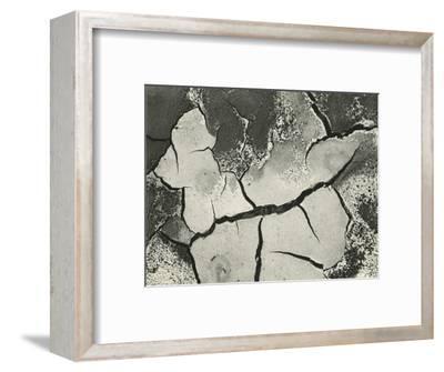 Mud Cracks, Salinas Valley, California, 1955-Brett Weston-Framed Photographic Print
