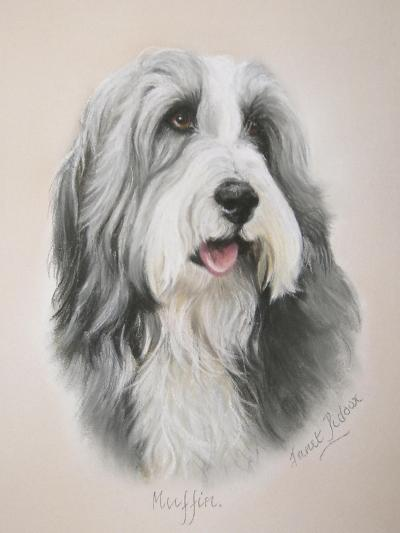Muffin-Janet Pidoux-Giclee Print