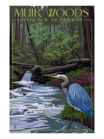 Muir Woods National Monument, California - Blue Heron-Lantern Press-Art Print