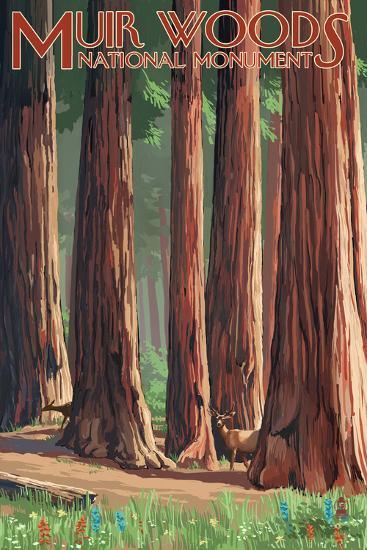 Muir Woods National Monument, California - Deer and Grove-Lantern Press-Wall Mural