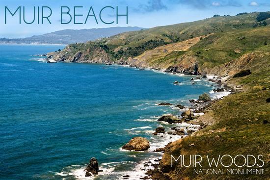 Muir Woods National Monument, California - Muir Beach Day Scene-Lantern Press-Wall Mural