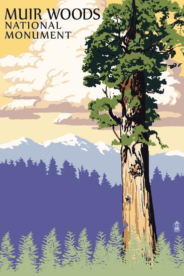 Muir Woods National Monument, California - Towering Redwood-Lantern Press-Wall Mural