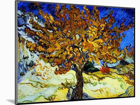 Mulberry Tree, c.1889-Vincent van Gogh-Mounted Premium Giclee Print