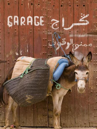 """Mule Parked in Front of a Sign That Reads """"Garage""""-Abraham Nowitz-Photographic Print"""