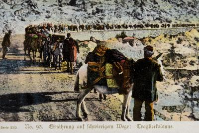 Mule Train on a Mountain Road--Photographic Print