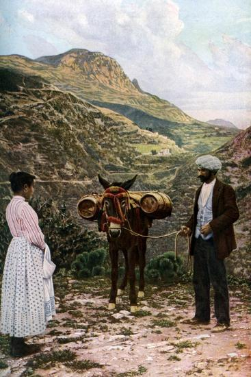 Mule with Water Kegs, Sicily, Italy, C1923-AW Cutler-Giclee Print