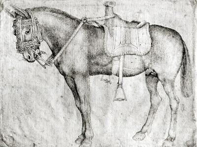 Mule-Antonio Pisani Pisanello-Giclee Print
