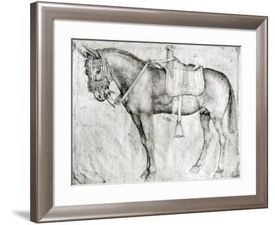Mule-Antonio Pisani Pisanello-Framed Giclee Print