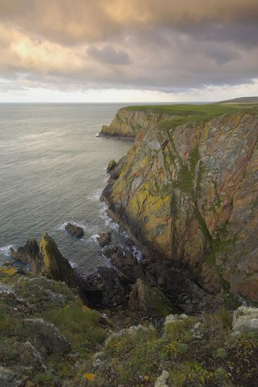 Mull of Galloway, Rhins of Galloway, Dumfries and Galloway, Scotland, UK-Gary Cook-Photographic Print