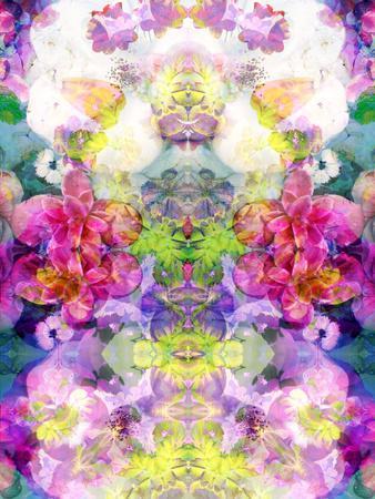 https://imgc.artprintimages.com/img/print/multicolor-blossoms-in-water-ornament-symmetri_u-l-q11ylmy0.jpg?p=0