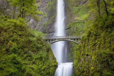 Multnomah Falls in the Columbia River Gorge Near Portland, Oregon, Usa-Brian Jannsen-Photographic Print