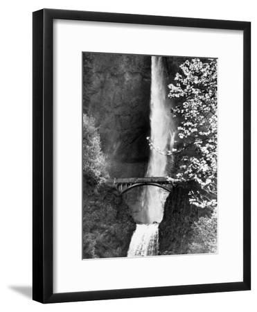 Multnomah Falls on Larch Mt. Where the Water Empties into the Columbia River-Alfred Eisenstaedt-Framed Premium Photographic Print