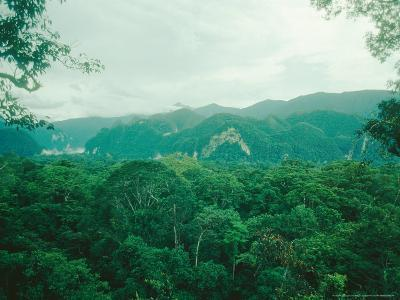 Mulu National Park, Borneo, Weather Time-Lapse, 6Pm-Rodger Jackman-Photographic Print