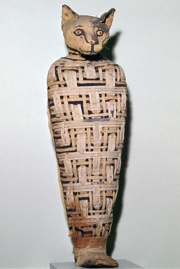Mummy of a cat, Abydos, Upper Egypt Roman Period, perhaps 1st century-Unknown-Giclee Print