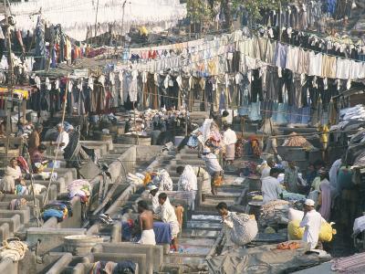 Municipal Laundry, Mahalaxmi Dhobi Ghat, Mumbai (Bombay), India-Tony Waltham-Photographic Print