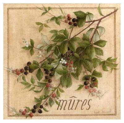 Mures-Vincent Jeannerot-Art Print