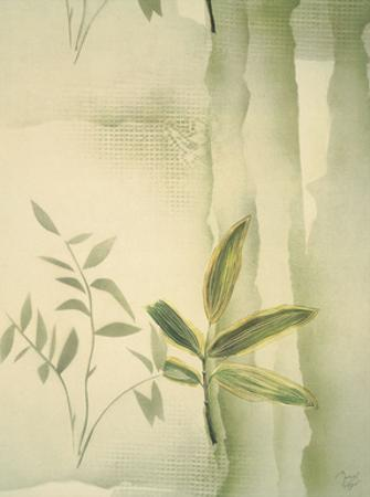 Vizcaya Ferns II by Muriel Verger