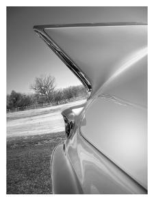 Cadillac Fin by Murray Bolesta