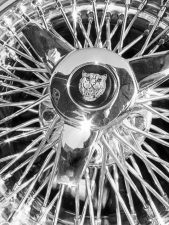 Jaguar Spokes