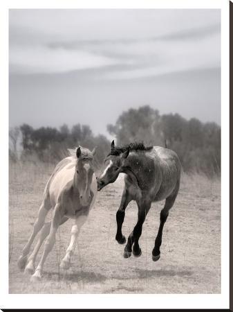 murray-bolesta-playful-pals-4