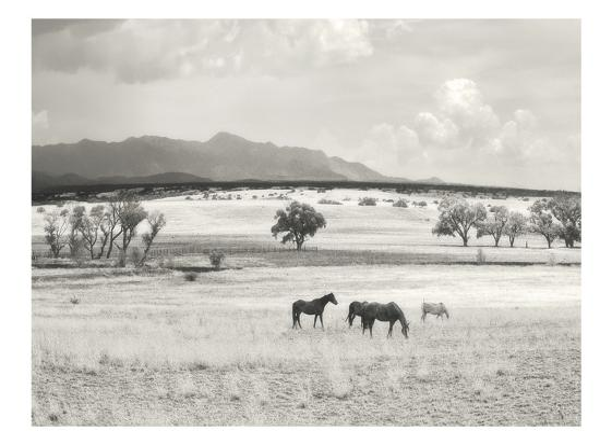 murray-bolesta-ranchland-9a