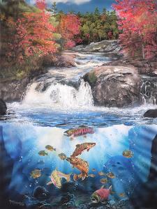 Fish Falls by Murray Henderson